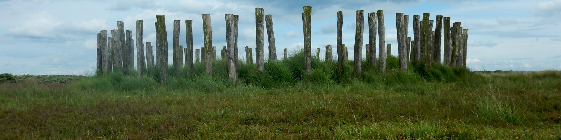 Regte Heide